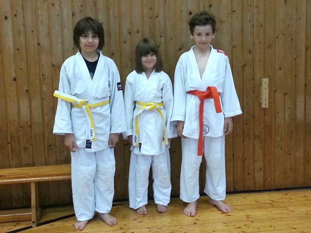 Judo_RhlEM_U12_2014